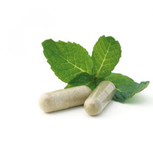 Dietary Supplements & Quality